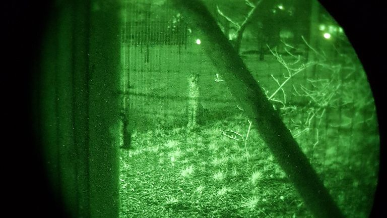 Night vision video shows officers trying to locate the suspects at Marwell Zoo