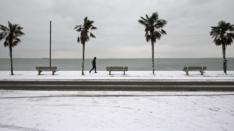 A pedestrian walks past palm trees on the snow-covered seafront at Southend-on-Sea in Essex