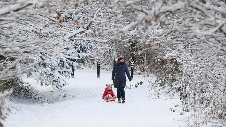 A woman pictured pulling a child on a sledge through a snow-covered wood at Larbert, near Falkirk in Scotland