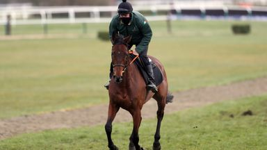 Can Chacun Pour Soi win on Cheltenham debut?