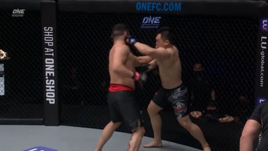 Big heavyweight knockout in MMA bout