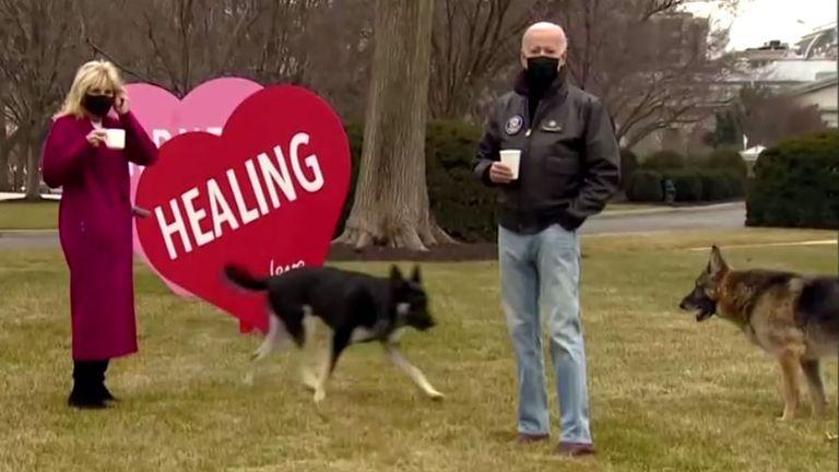 جو و جیل بایدن به همراه سگهایشان سرگرد و قهرمان