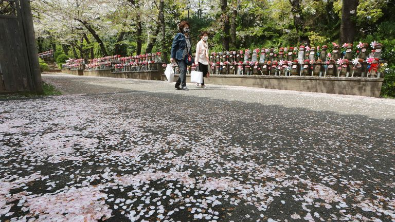 People wearing face masks to protect against the spread of the coronavirus walks under the cherry blossoms in Tokyo, Tuesday, March 30, 2021. (AP Photo/Koji Sasahara)