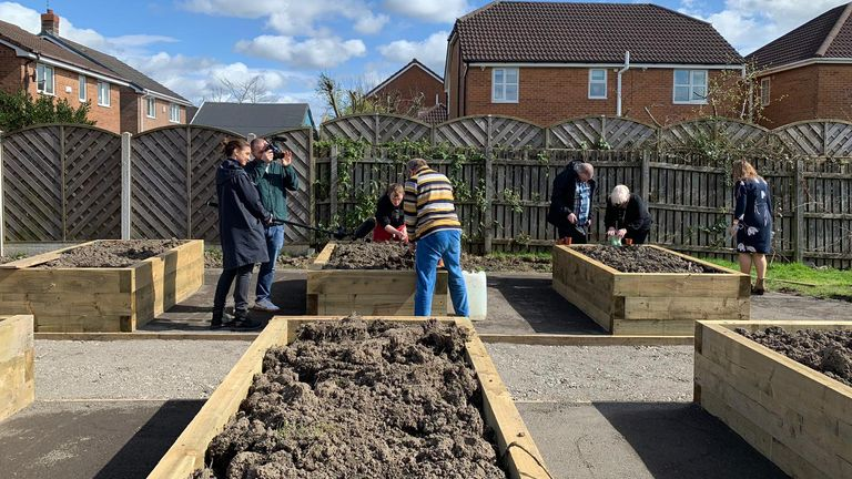 Work in progress pix of garden in GM