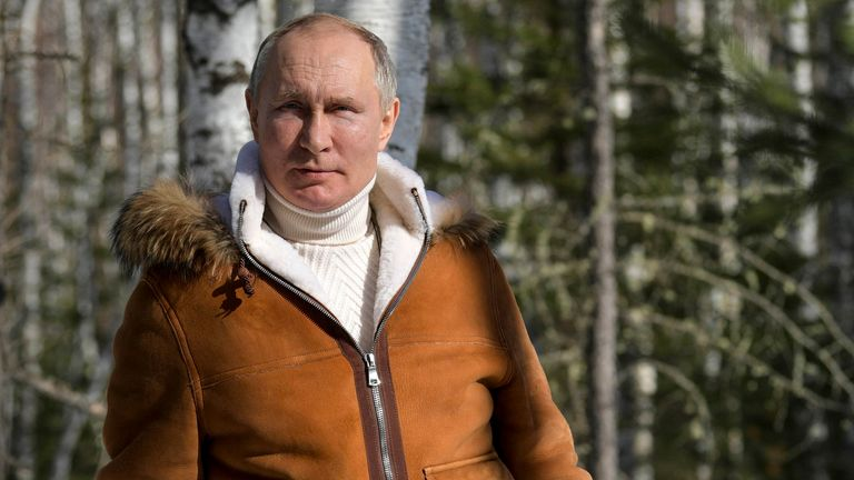 Russian President Vladimir Putin poses for a photo in a taiga forest in Russia's Siberian region. Pic: AP
