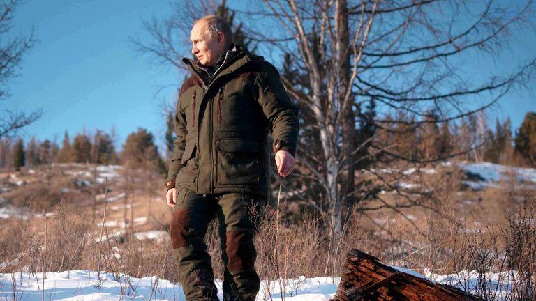Russian President Vladimir Putin, walks in a taiga forest in Russia's Siberian region in Russia. Pic: AP