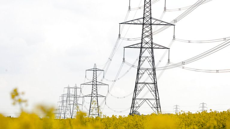 Illustative image of electricity pylons. (Newscast Limited via AP Images)