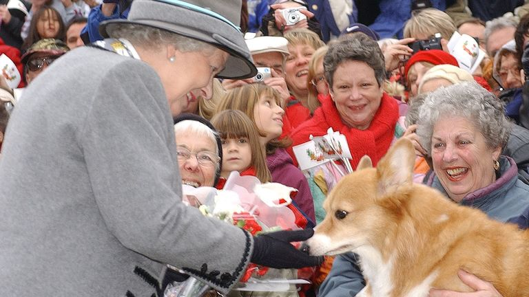 Queen Elizabeth II admires a corgi from the Manitoba Corgi Association as she meets the crowd at The Forks in Winnipeg, Manitoba, during her two week Golden Jubilee tour of Canada. *...Later, the Queen and her husband, the Duke of Edinburgh, were travelling on a water taxi when vessel's engine failed and a second water taxi, travelling behind the royal boat, had to be lashed to the stricken vessel to tow it to safety and the royals' destination.