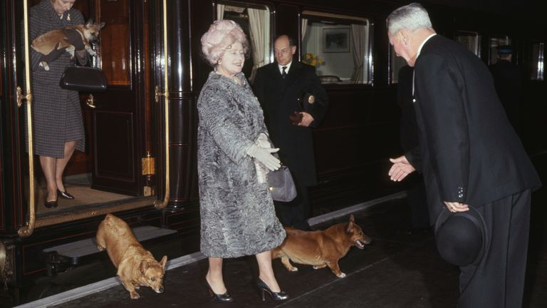 The Queen Mother is pictured with her Corgis in 1966