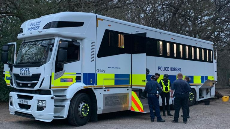 اسب های پلیس در جستجوی ریچارد اوکوروگی ، که از جنوب لندن گم شده بود ، کمک می کنند.  عکس: پلیس ملاقات کرد