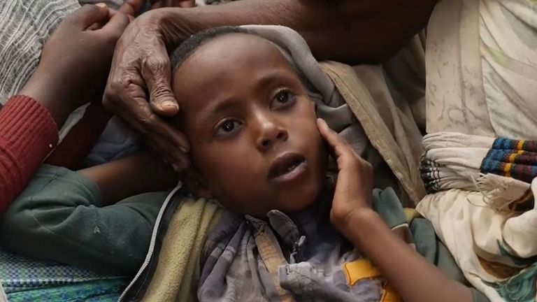 After four months of warfare between Ethiopia's national defence force and fighters from the Tigray People's Liberation Front (TPLF), more than 500,000 Tigrayans have lost their homes.