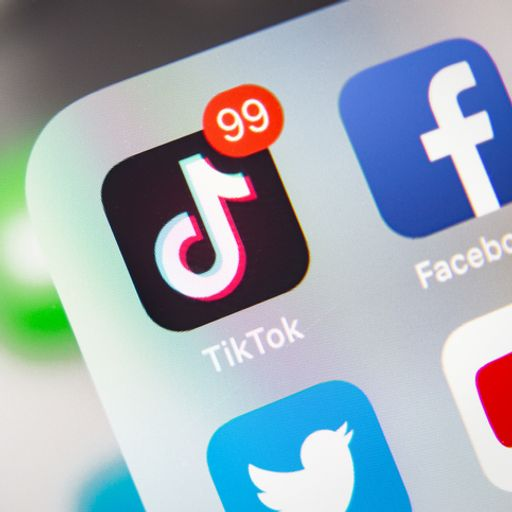 Explainer: TikTok: What data does it collect on its users, and how do other apps compare?