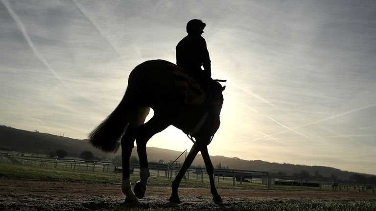 Acapella Bourgeois heads to the gallops tat Cheltenham Racecourse.