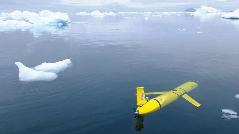 A glider in the Antarctic (Pic: David White)