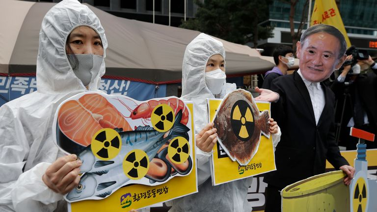 Environmental activists have been protesting against the move in Japan