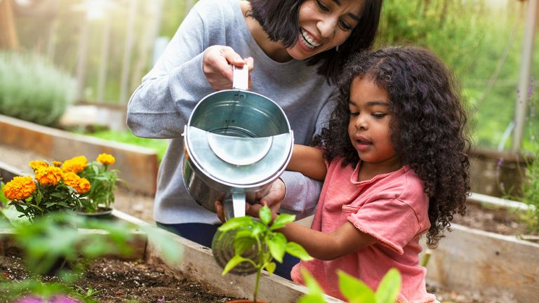 Regular gardening can have a positive effect on mental health, the research suggests