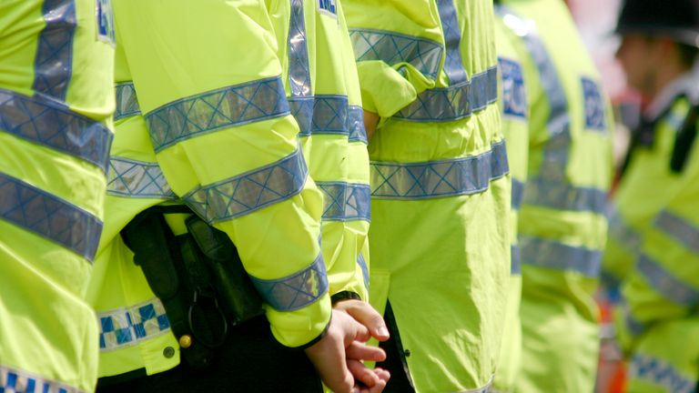 Essex Police has defended its investigation into the allegations