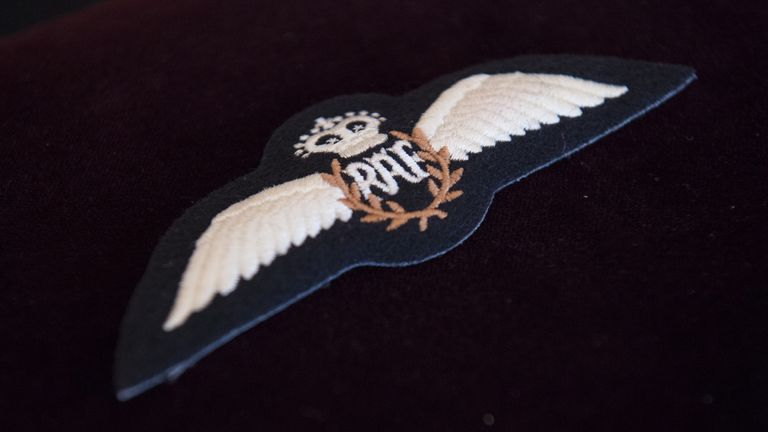 The Duke of Edinburgh's RAF Wings