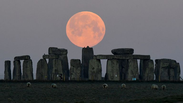 """Sheep graze as the full moon, known as the """"Super Pink Moon"""", sets behind Stonehenge stone circle near Amesbury, Britain, April 27, 2021. REUTERS/Toby Melville"""