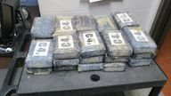 The drugs are worth more than £1m in street value. Pic: Gulf Shores Police Department