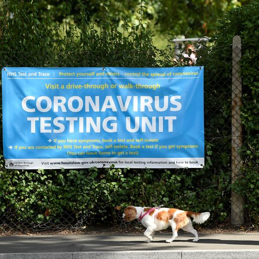 Coronavirus variants given new names by the WHO under new system - here's the full list