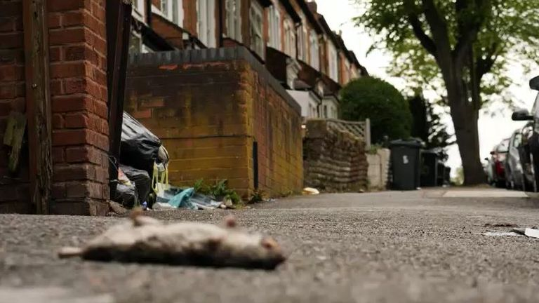 Locals say the increase in exempt housing has left the area dirty and crime-ridden