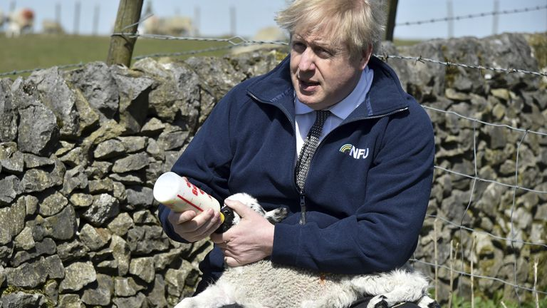 Boris Johnson feeds a lamb on a farm in Stoney Middleton, north Derbyshire while on the local election campaign trail