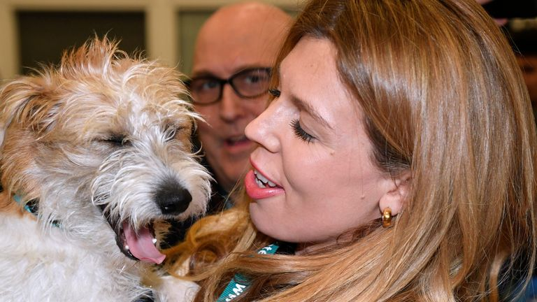 Carrie Symonds - and even Dilyn the dog - did not escape Mr Cummings's wrath