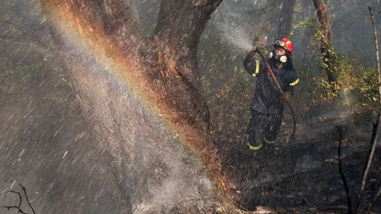 Almost 300 firefighters battled the blaze