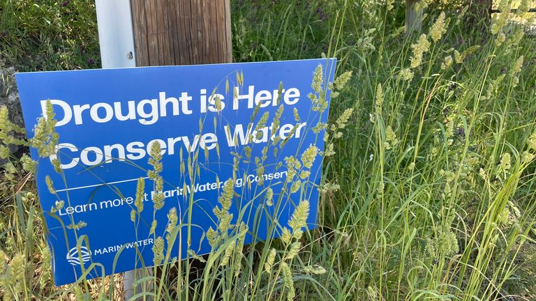 'Climate change in action': Severe drought sees California reservoirs drop to alarming levels