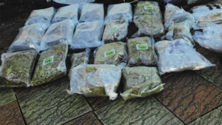 Drugs 20kg cannabis from Lime Grove