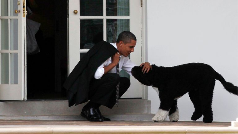U.S. President Barack Obama bends down to pet his dog, Bo, outside the Oval Office of the White House in Washington March 15, 2012