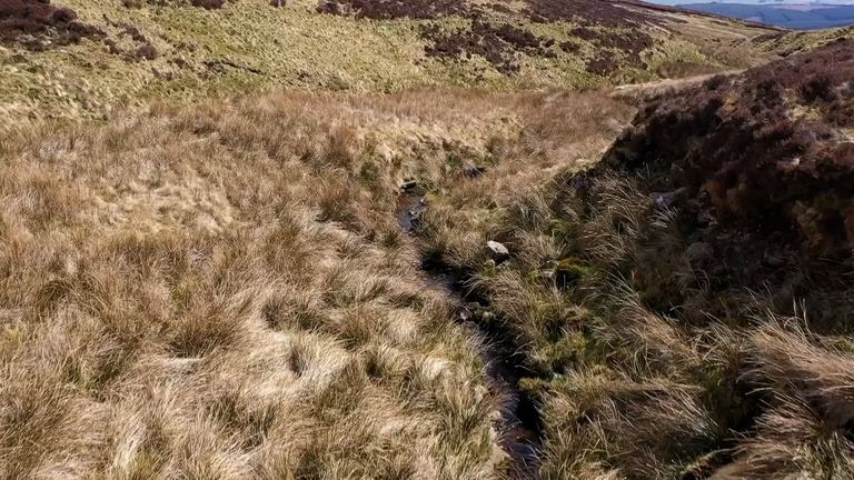 10% of the UK consists of peatland