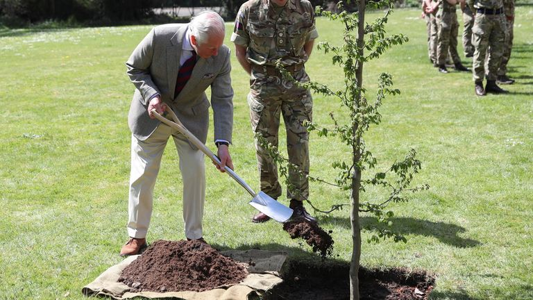 Prince Charles planted a tree in the grounds of Windsor Castle