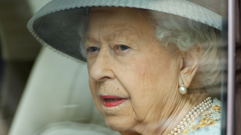 The Queen is said to have been given the puppies to cheer her up