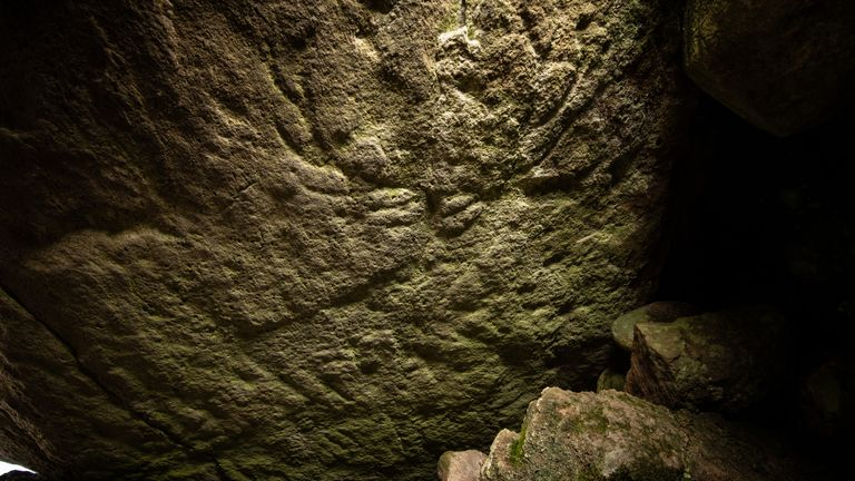 Historic Environment Scotland has said there are deer carvings visible on this rock