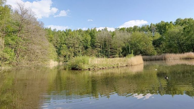 The two-year-old boy was pulled from Swanwick Lake. Pic: Google Maps