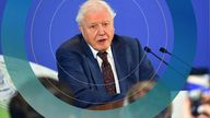 David Attenborough attends a conference about the COP26 UN Climate Summit, in London
