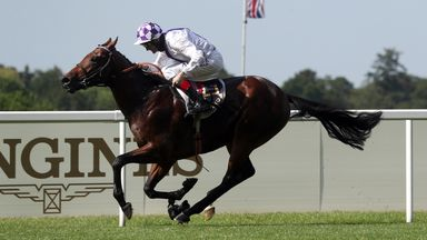 Bolger expected St James's Palace Stakes success