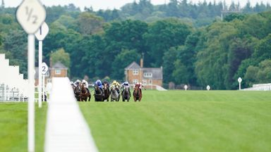 Fast ground expected at Royal Ascot