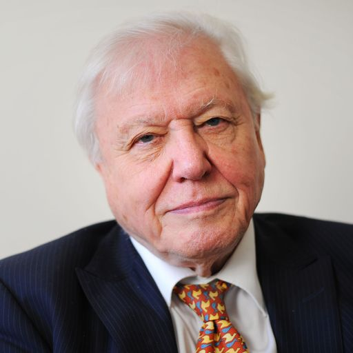 Sir David Attenborough says politicians must 'lead' if public is to embrace net zero challenge