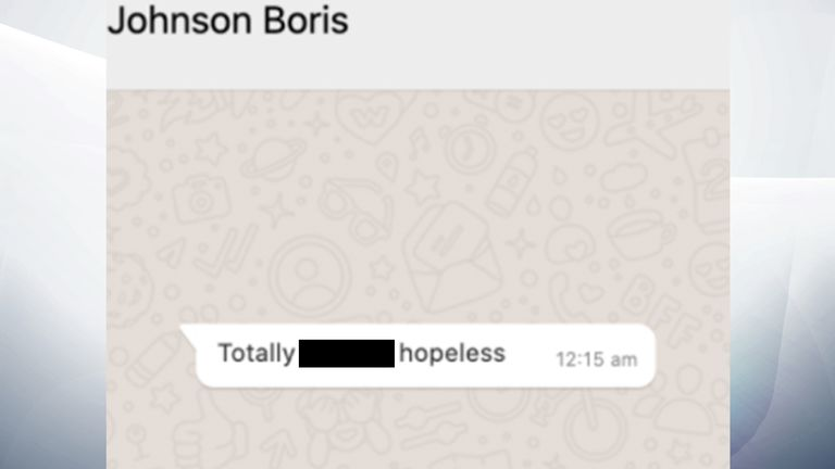 WhatsApp messages between Boris Johnson and Dominic Cummings