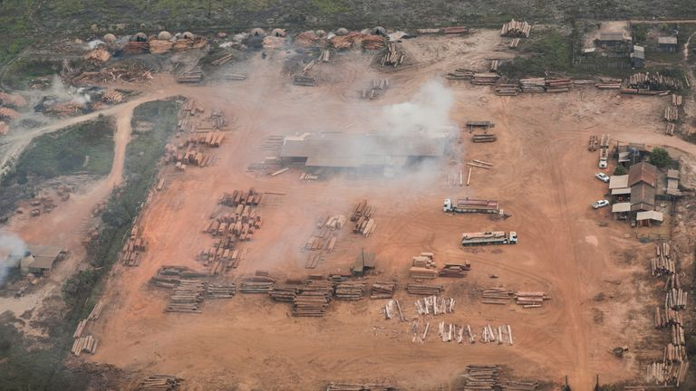 An aerial view shows logs cut from the Amazon rainforest near Porto Velho, Rondonia State