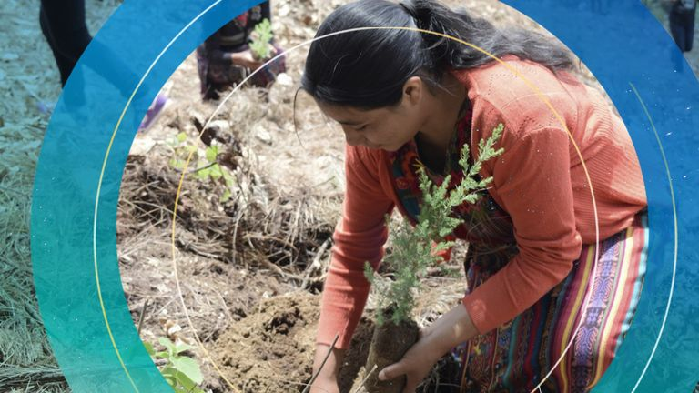 On the Daily Climate Show we meet the leader working with young people to build sustainable communities in Central America