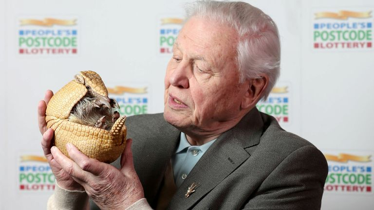 2017 Sir David Attenborough holds 'Inti', an armadillo from Edinburgh Zoo, before receiveing a £250,000 cheque from the People's Postcode Lottery for the charity Fauna & Flora International of which he is Vice-President, at Prestonfield House, Edinburgh.