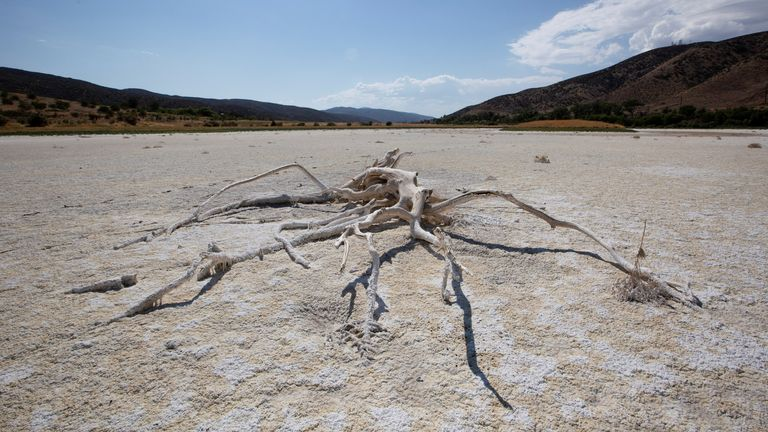 A view of Elizabeth Lake, that has been dried up for several years, as the region experiences extreme heat and drought