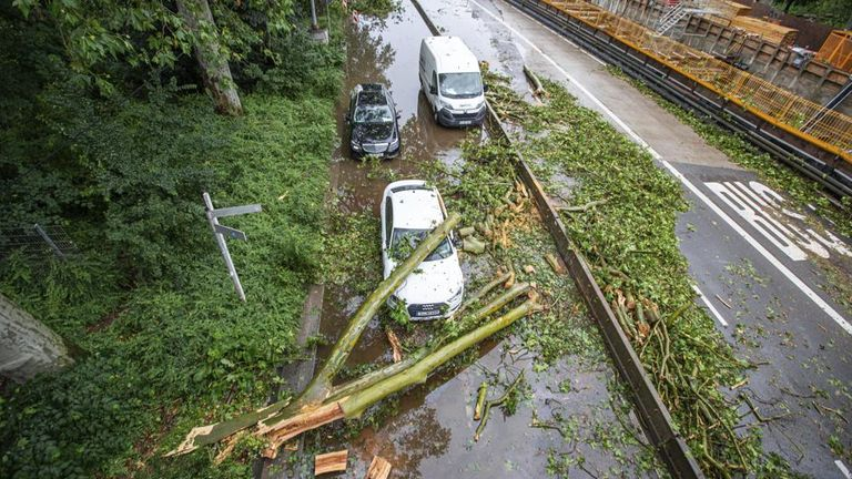 A tree hit a car and blocked a street after a storm in Stuttgart. Pic: Simon Adomat/VMD-Images/dpa/AP