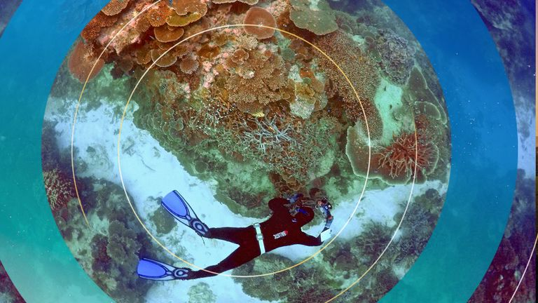 Australia's Great Barrier Reef is one of its most popular tourist attractions