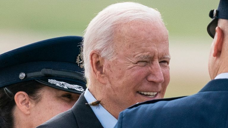 President Joe Biden, with a brood X cicada on his back, walks to board Air Force One. Pic: AP