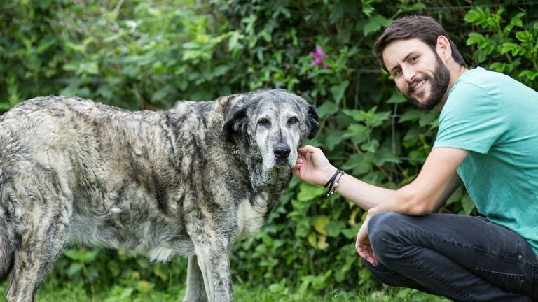 Dog trainer Jordan Shelley with Spanish mastin Nana, who died in the summer of 2020